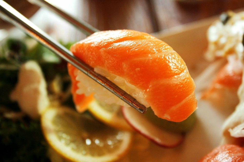 Salmon Talk